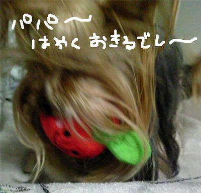 16fdff96.jpg