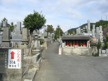 墓場の中の遍路道