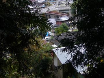 岩屋寺参道からの眺め1