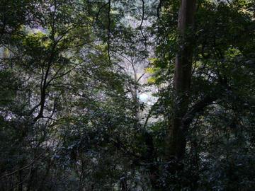岩屋寺参道からの眺め2