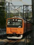 P1130497.jpg