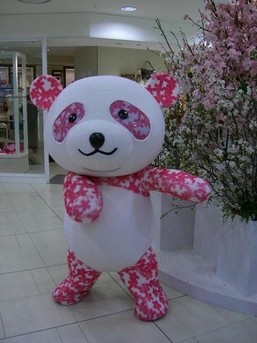 panda.dance2.jpg.jpg