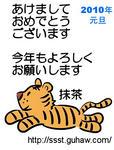 tiger4blog.jpg