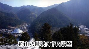 桂田 長俊