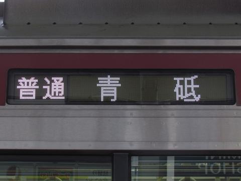 普通青砥_1