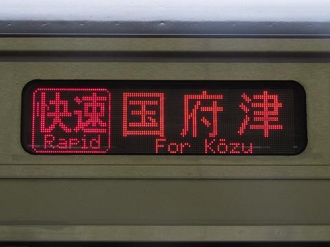 湘南新宿ライン東海道線直通/快速国府津_1