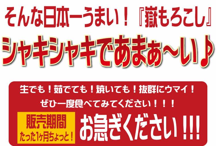 【生食可能 青森県産】 岩木山麓 嶽もろこし(嶽きみ)10本
