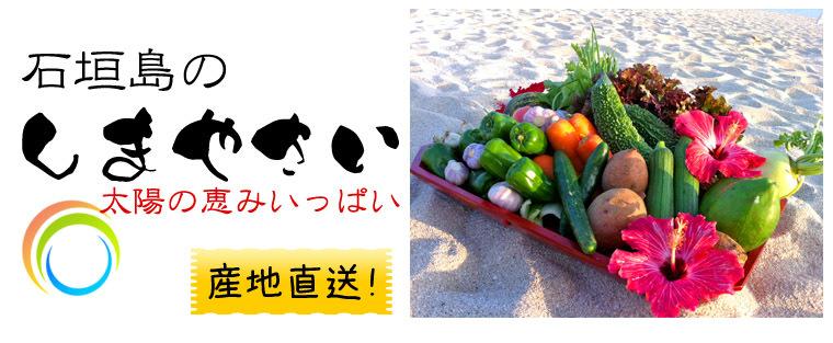 沖縄県石垣島【島やさい&果物】詰め合わせ・プラチナセット