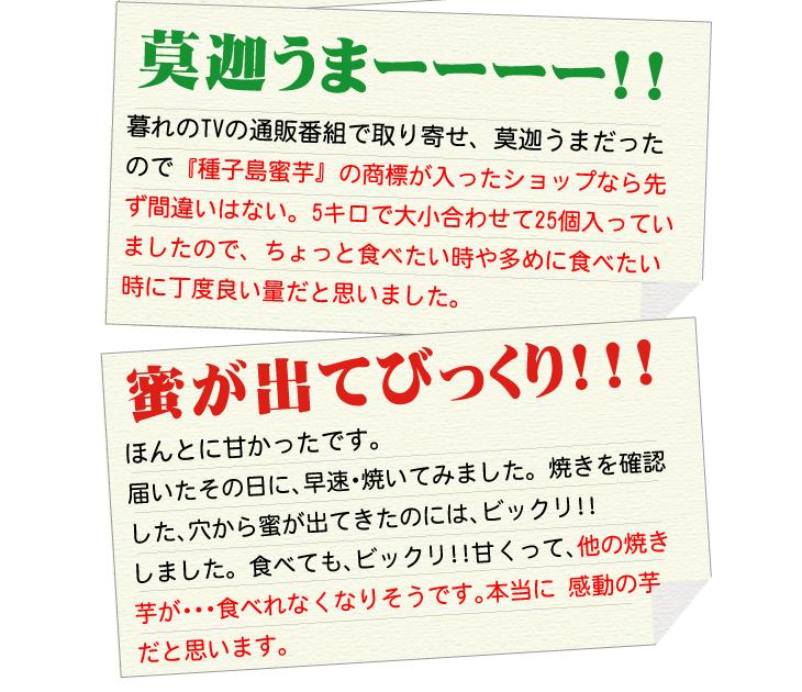 夢百笑 種子島蜜芋 5Kg 【安納芋(あんのういも)】