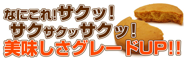 冬の豆乳おからクッキー 250g×4袋