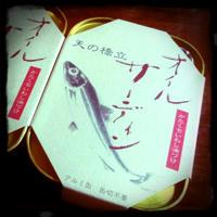 竹中缶詰 オイルサーディン 天の橋立