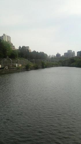 20100508-01.JPG