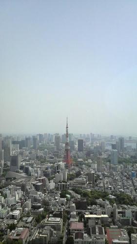 20110505-01.JPG