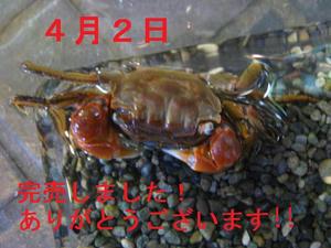 f4027dd9.jpeg