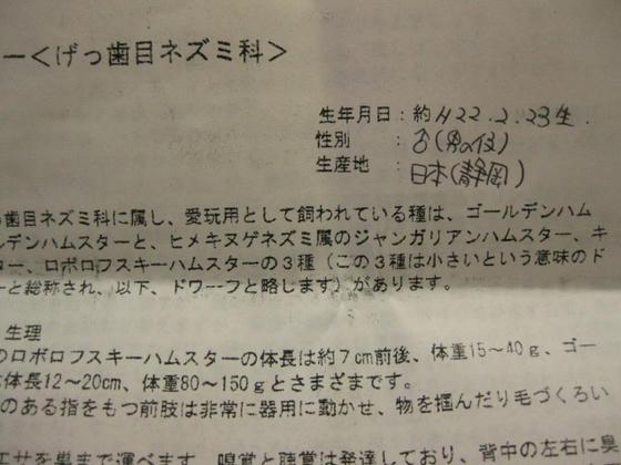 IMG_2225.JPG