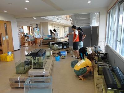 http://file.teamichiba.blog.shinobi.jp/DSC00743.jpg