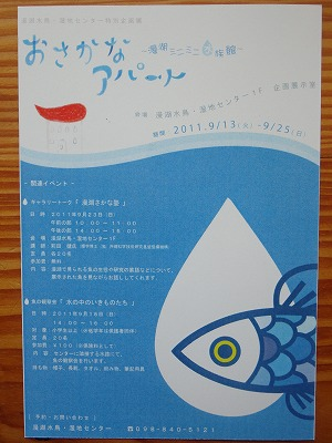 http://file.teamichiba.blog.shinobi.jp/DSC00746.jpg