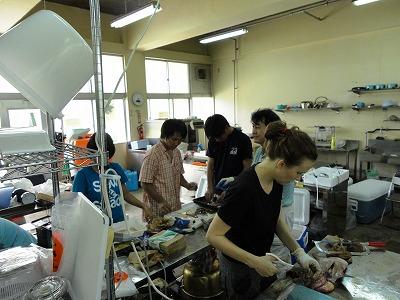 http://file.teamichiba.blog.shinobi.jp/3a07fc41.jpeg