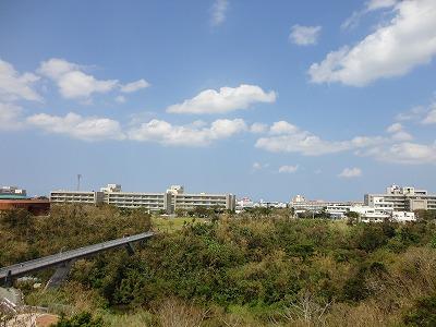 http://file.teamichiba.blog.shinobi.jp/DSC02574.jpg