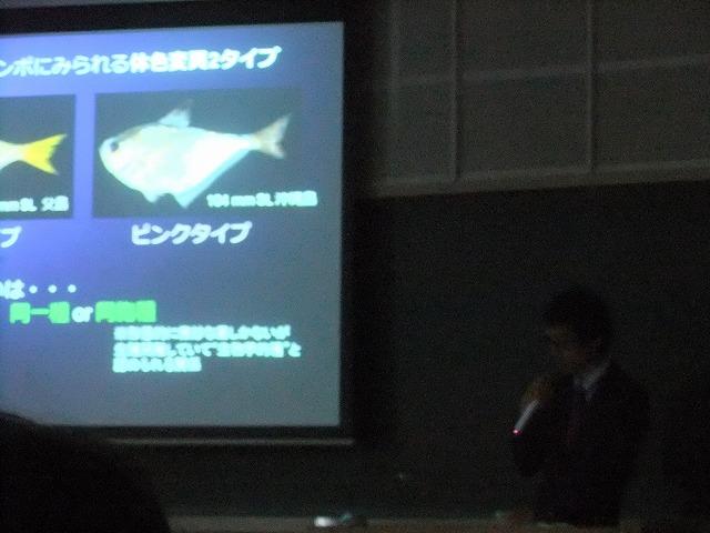 http://file.teamichiba.blog.shinobi.jp/DSCF0688.jpg