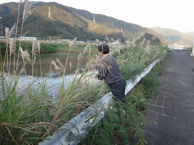 http://file.teamichiba.blog.shinobi.jp/DSC04682.jpg