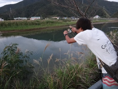 http://file.teamichiba.blog.shinobi.jp/DSC04700.jpg