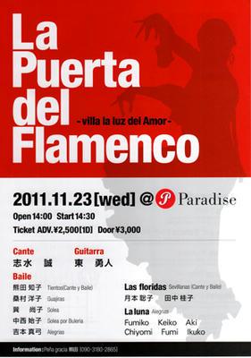 flamenco_s.jpeg