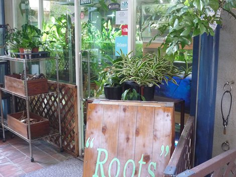 水草専門店Roots