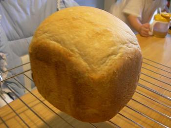 天然酵母でパン