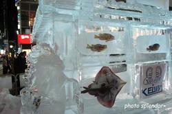 氷の祭典4