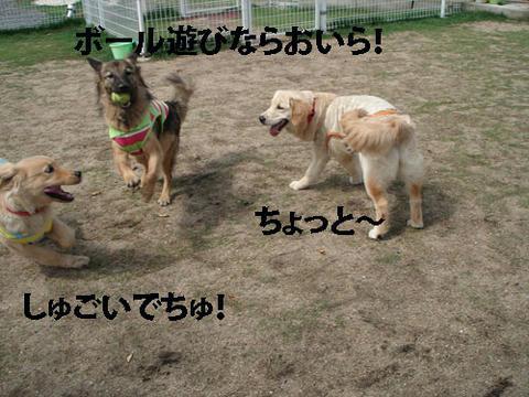 run386.jpg