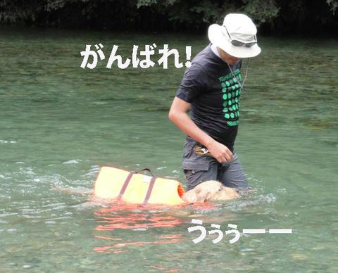 run467.jpg
