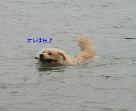 run759.jpg