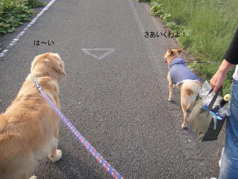 run1008.jpg