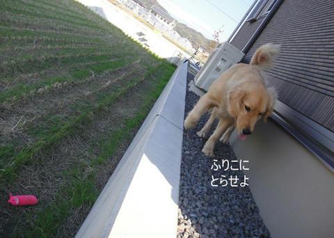 run1329.jpg