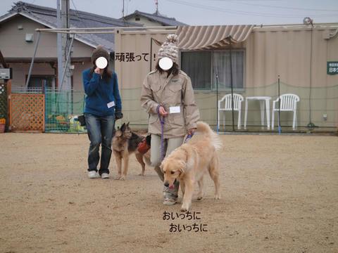 run1363.jpg