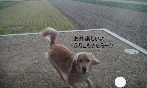 run1480.jpg