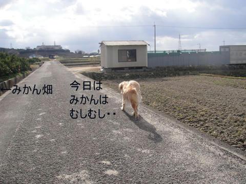 run1495.jpg