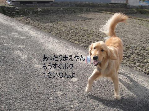 run1494.jpg