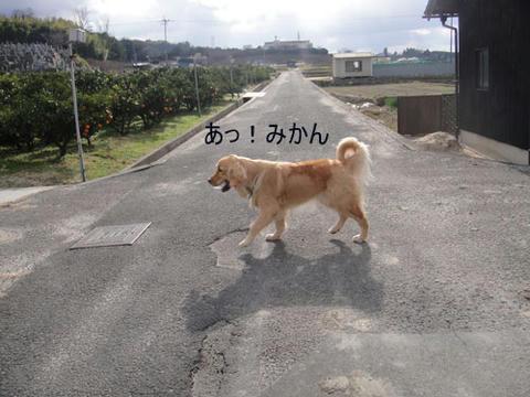 run1493.jpg