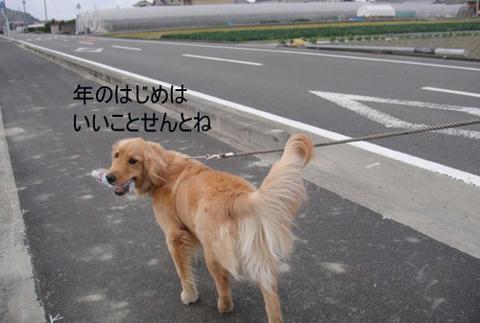 run1487.jpg