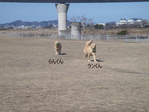 run1740.jpg