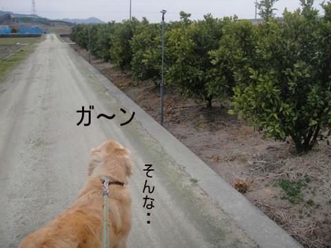run1808.jpg