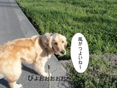 run0321-4.JPG