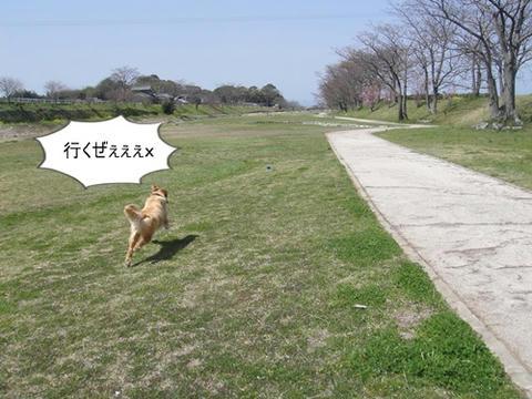 run0322-1.JPG