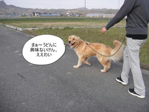 run0329-4.JPG
