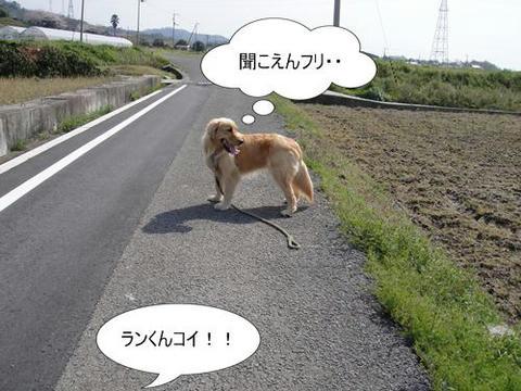 run0405-3.JPG