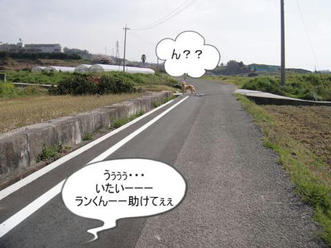 run0405-6.JPG