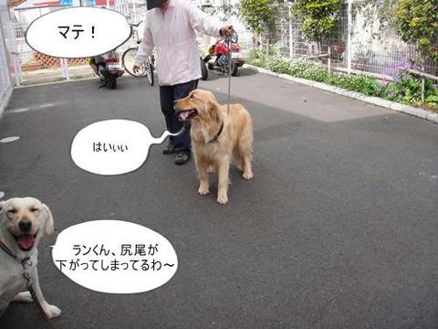 run0410-2.JPG