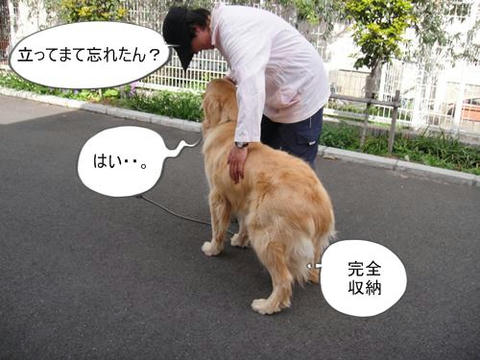 run0410-4.JPG